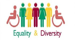 Equality and diversity instructor course
